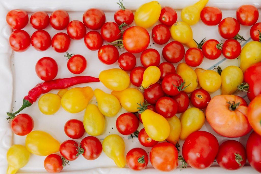 Tomato Josh Gitalis